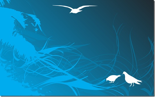 Seagull_1920x1200